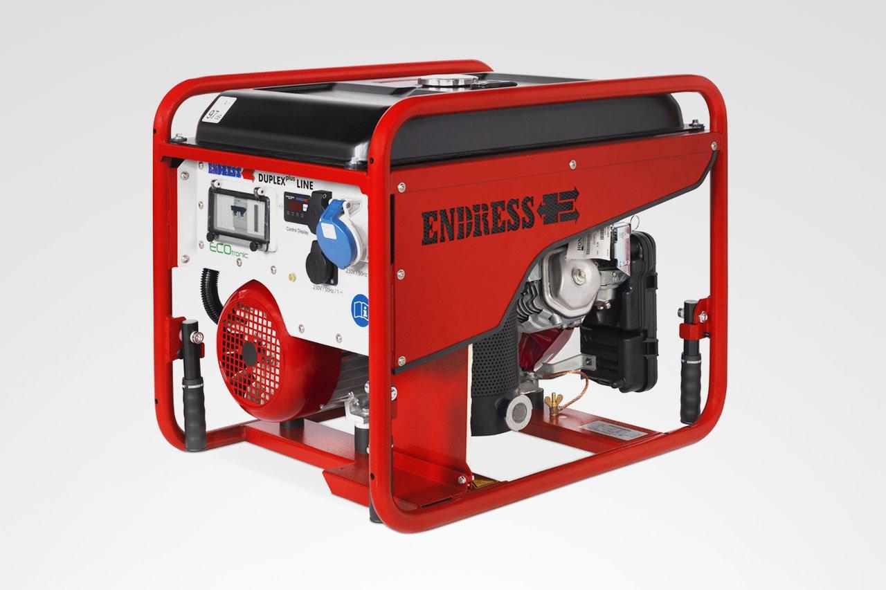 Endress ESE 406 HG-GT DUPLEX Stromerzeuger