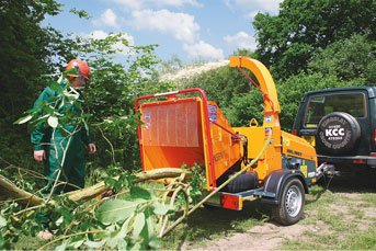 HKL BAUTIPP: Baumschnitt und Baumverpflanzung